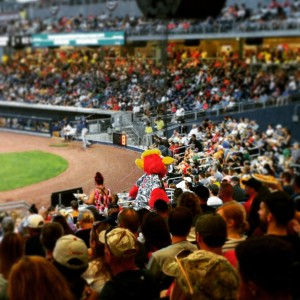 Hot chicken and baseball, Nashville